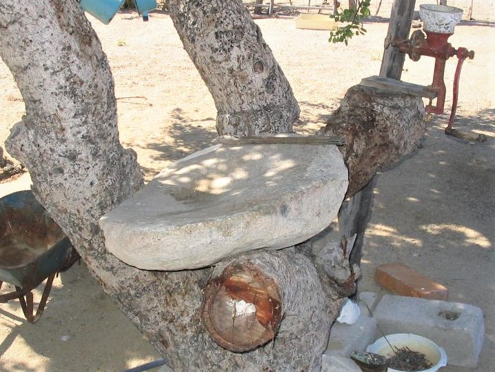 After Inocencio Rosas Castro from El Sargento married  Socorro Aguilar from Rancho Las Canoas, he shouldered this heavy rock metate Socorro had grown up using, and carried it more than 6 miles down the arroyo to their outdoor kitchen in El Sargento.